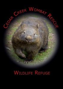 Cedar Creek Wombat Rescue
