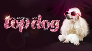 australias top dog glamour dog2 flairs low rez
