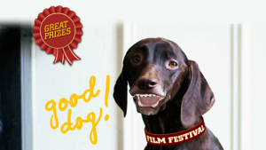 The Good Dog Film Festival