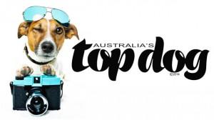 Australias Top Dog comp poster