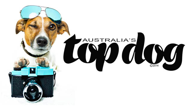 Australias Top Dog comp poster