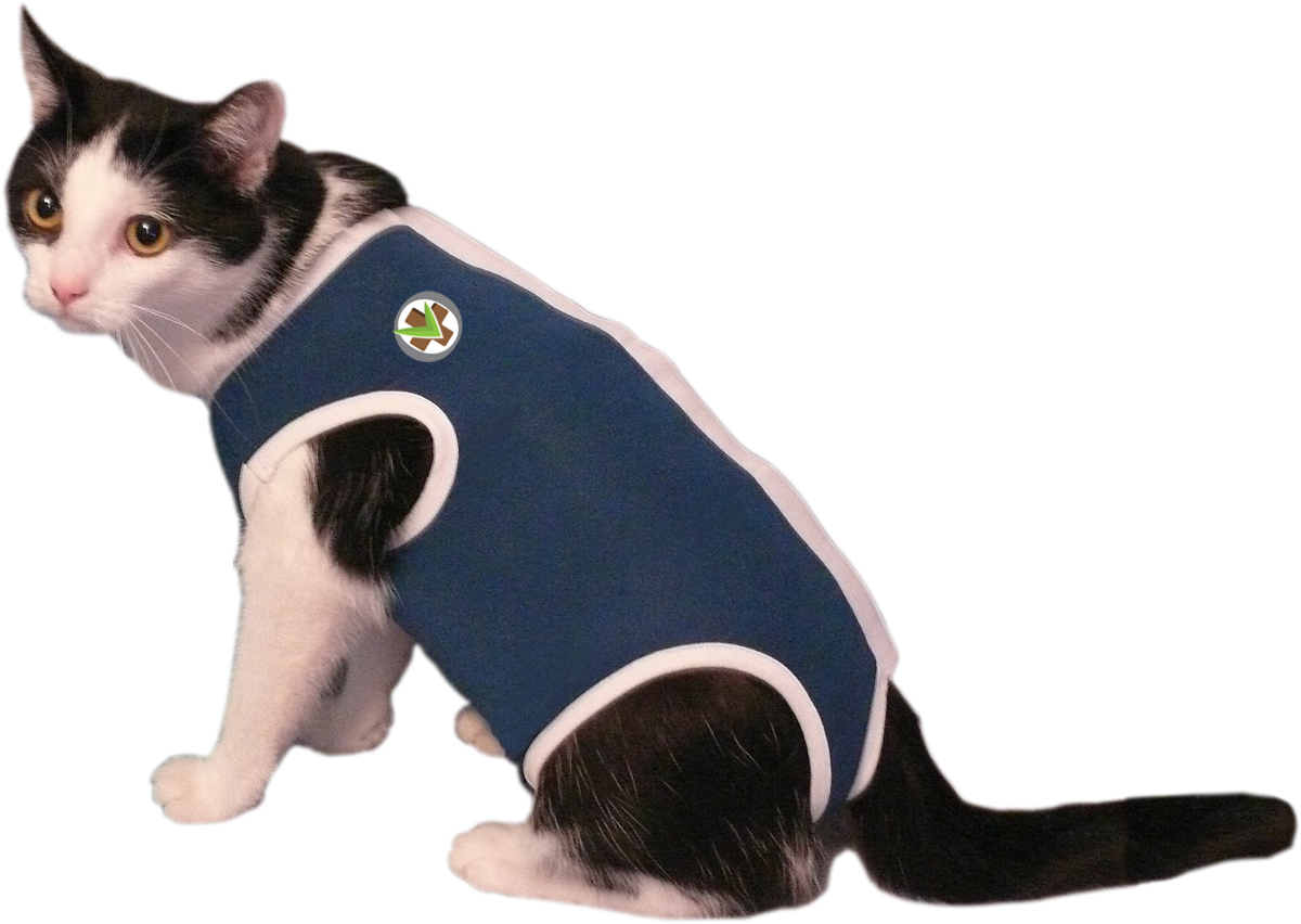 Recovery Pet Jacket