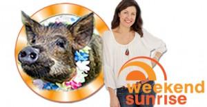 Tracey Preston from MATV on Sunrise this Sunday 13th July 2014