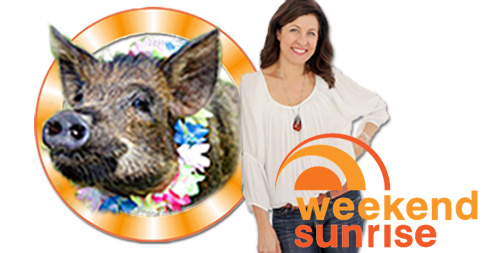 Tracey Preston is on Weekend Sunrise this Sunday!